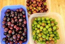 Préparation olives du jardin