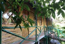 http://www.staybuz.com/chikmagalur-homestay/ / luxury est home stay and resort in chikmaglur book online