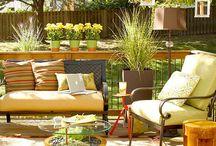 backyard  / by Rebekah Oakley
