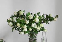 Natural floral displays