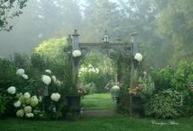 Gartenansichten und Blumen