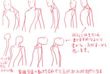 Character Anatomy - Shoulder / Character Design References (어깨)