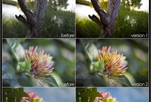 Lightroom presets and templates