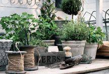 Capanni per giardinaggio