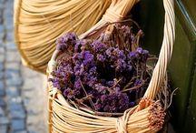 All things Lavender / by Pina Guido-Armata