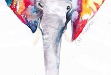 Acuarela De Elefante