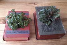 Holkamodrookata DIY / Knihovnice o knížkách, vážně i nevážně :-)