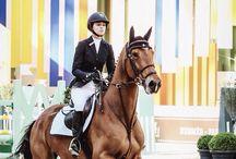 Horses & Riding ♡