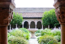 14.Cloister_Gardens / [nature is often hidden, sometimes overcome, seldom extinguished] francis bacon