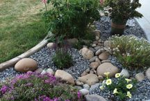 Garden ideas / Plants and stones
