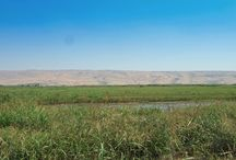 Israel Nature Reserves / Israel is blessed with a diverse terrain and nature from the snowy top of Mt Hermon to the deserts in the south of Israel. There is something for everyone.