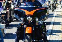 Harleysite #harley #harleydavidson #harleysite #streetglide #europeanbikeweek #bikeshow #custom #custombike #chopper
