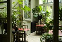 Interior_Green