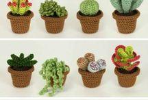 Amiguri Succulents Pattern