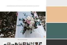WHD Color Palette / Color palette from Wild Heart Design websites.