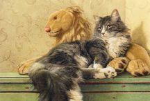 BEAUTIFUL ♥ CAT ME.