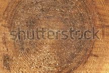 Old Wood Texture, Tree Rings Background