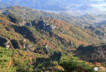 JAPON - Visiter Shodoshima / Shodoshima, c'est une île japonaise méconnue située dans la mer intérieure de Seto, dans la préfecture de Kagawa. Elle a pourtant tout pour plaire : climat méditerranéen, oliveraie, producteurs de saké et de sauce soja. L'art du bon-vivre !