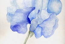 Watercolors / by Christine Albright