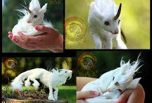 animal fantasy art