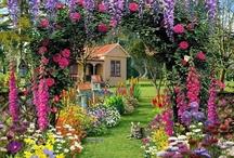 Giardini , Shabby