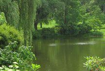 Ponds & Pools