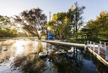 Synergy Parklands | Kings Park