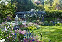 Dream Gardens / by Deb Messinger