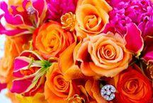 fiori ♧♣♧