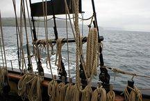 c: tabletop: ptu pirates: captain azure (noodle)