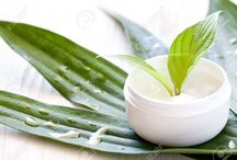 Buy Olive Oil Cream for your Skin