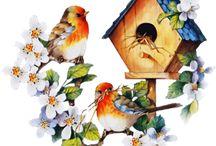 Птицы винтаж