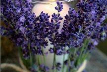ozdoby z kwiatów i owoców - wazony,świeczki....na stół i taras