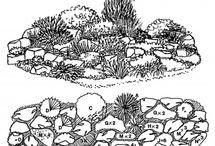 Landscape plans / by Kim Knox