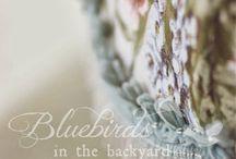 Bluebirds in the Backyard