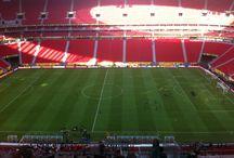 Copa das Confederações - Brasil  / Fotos tiradas por Nando Gross