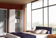 Workspace home range / Exclusive home range