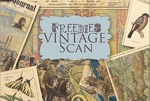 downloads, freebees, printables