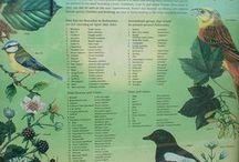 Wildlife, Habitats & Natural Amenities