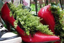 shoe planting