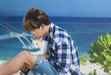 BTS ~ Park Jimin ~