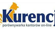 Amronet.pl Ankieta