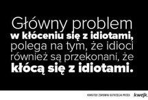 Quotes and similar / Kłócenie się z idiotami.