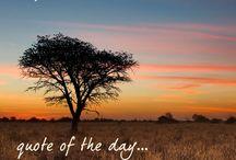 KALAHARI: Inspiration of the Week