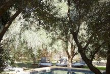 Magic moroccan pools /  moroccoportfolio.com