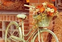 Bikes in the Garden / by Karen Lambert