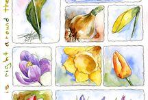 Akvarely - příroda