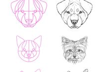 Tutorial - Drawing Animals / Animal drawing reference