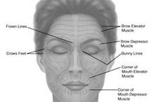 Great Plastic Surgery Articles & Information