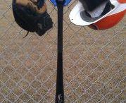 Baseball equipment organizer $19.99 / Boys hanging their equipment on the DOM.
